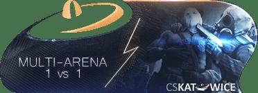 multi-arena-min.png